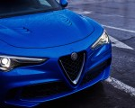 2018 Alfa Romeo Stelvio Quadrifoglio (Color: Misano Blue) Grill Wallpapers 150x120 (32)