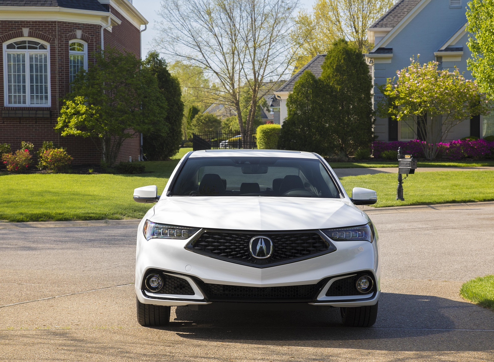 2019 Acura TLX A-Spec SH-AWD Front Wallpapers (13)