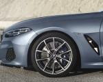 2019 BMW 8-Series M850i Detail Wallpapers 150x120 (19)