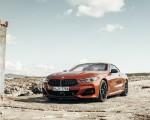 2019 BMW 8-Series M850i Front Three-Quarter Wallpapers 150x120 (40)