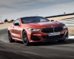 2019 BMW 8-Series M850i Front Wallpapers 150x120 (46)