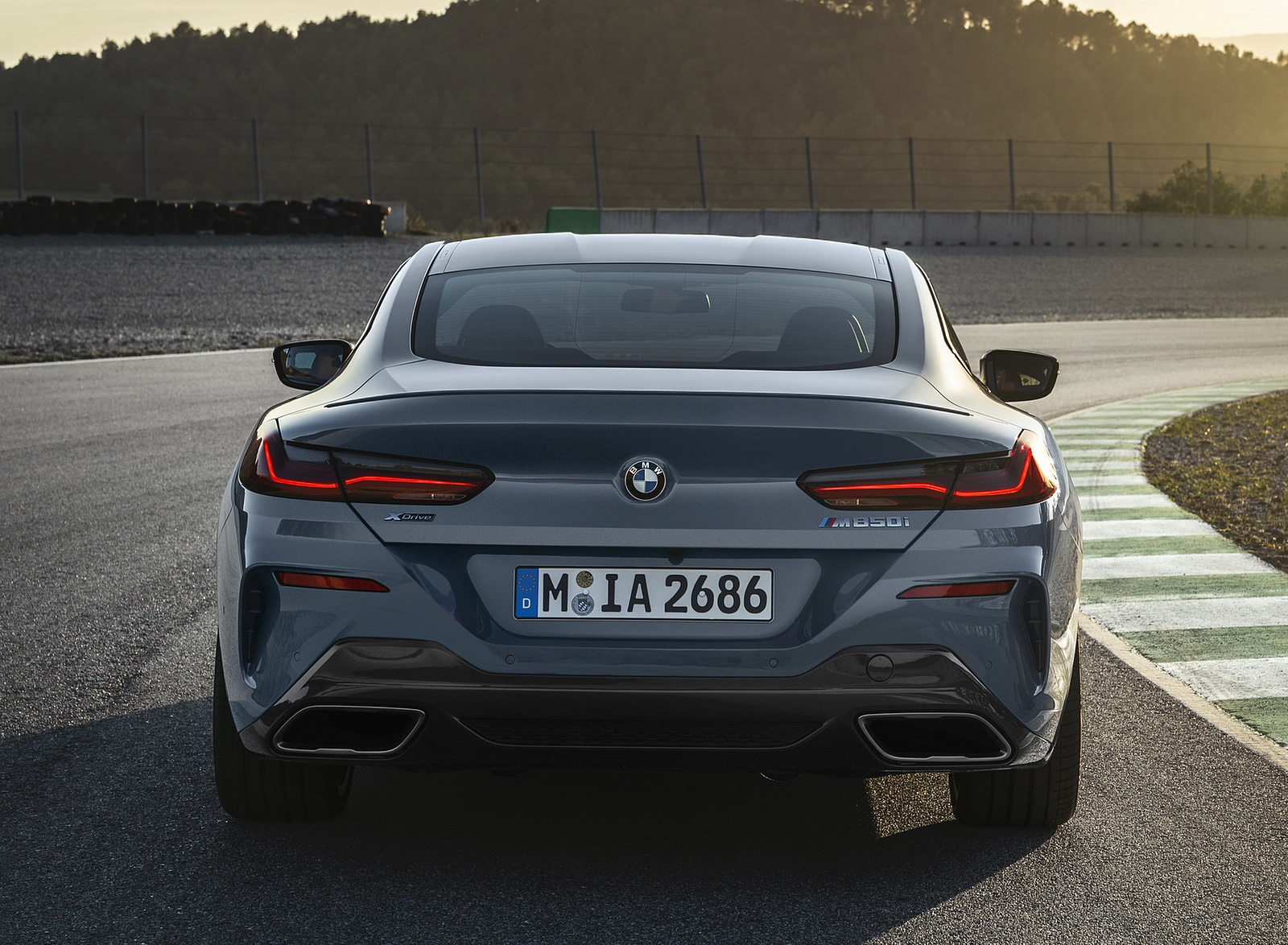2019 BMW 8-Series M850i Rear Wallpapers (8)