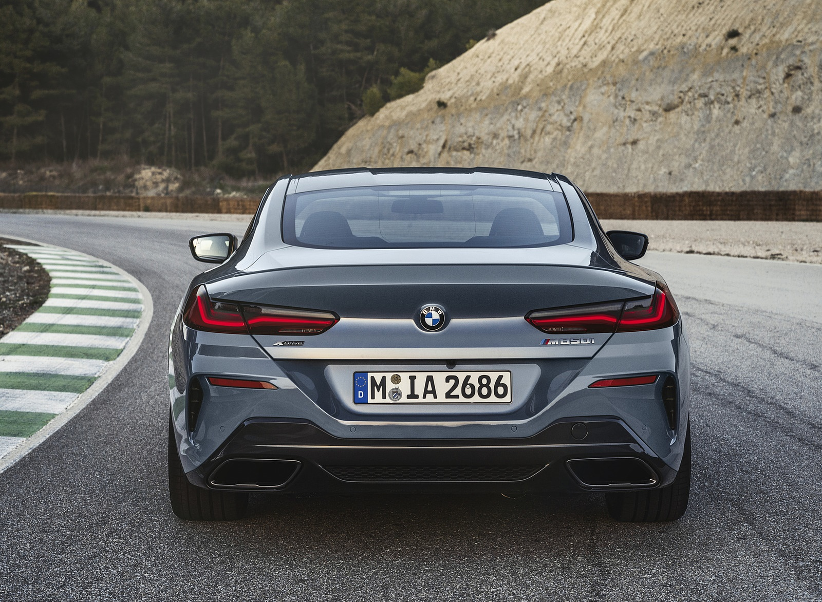 2019 BMW 8-Series M850i Rear Wallpapers (7)