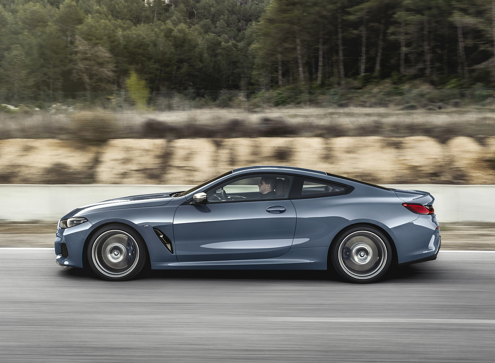 2019 BMW 8-Series M850i Side Wallpapers (5)