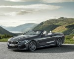 2019 BMW 8 Series M850i xDrive Convertible Front Three-Quarter Wallpapers 150x120 (16)