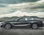 2019 BMW 8 Series M850i xDrive Convertible Side Wallpapers 150x120 (27)