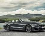 2019 BMW 8 Series M850i xDrive Convertible Side Wallpapers 150x120 (12)