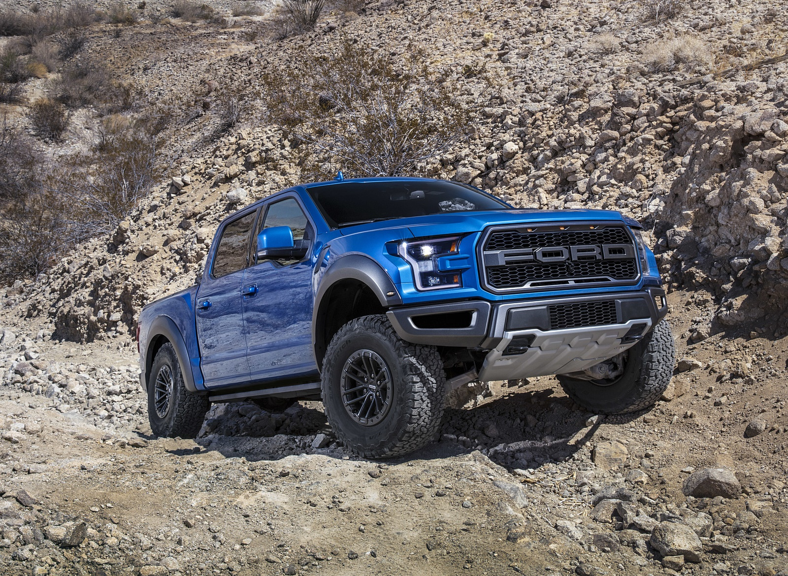 2019 Ford F-150 Raptor Front Three-Quarter Wallpapers (1)