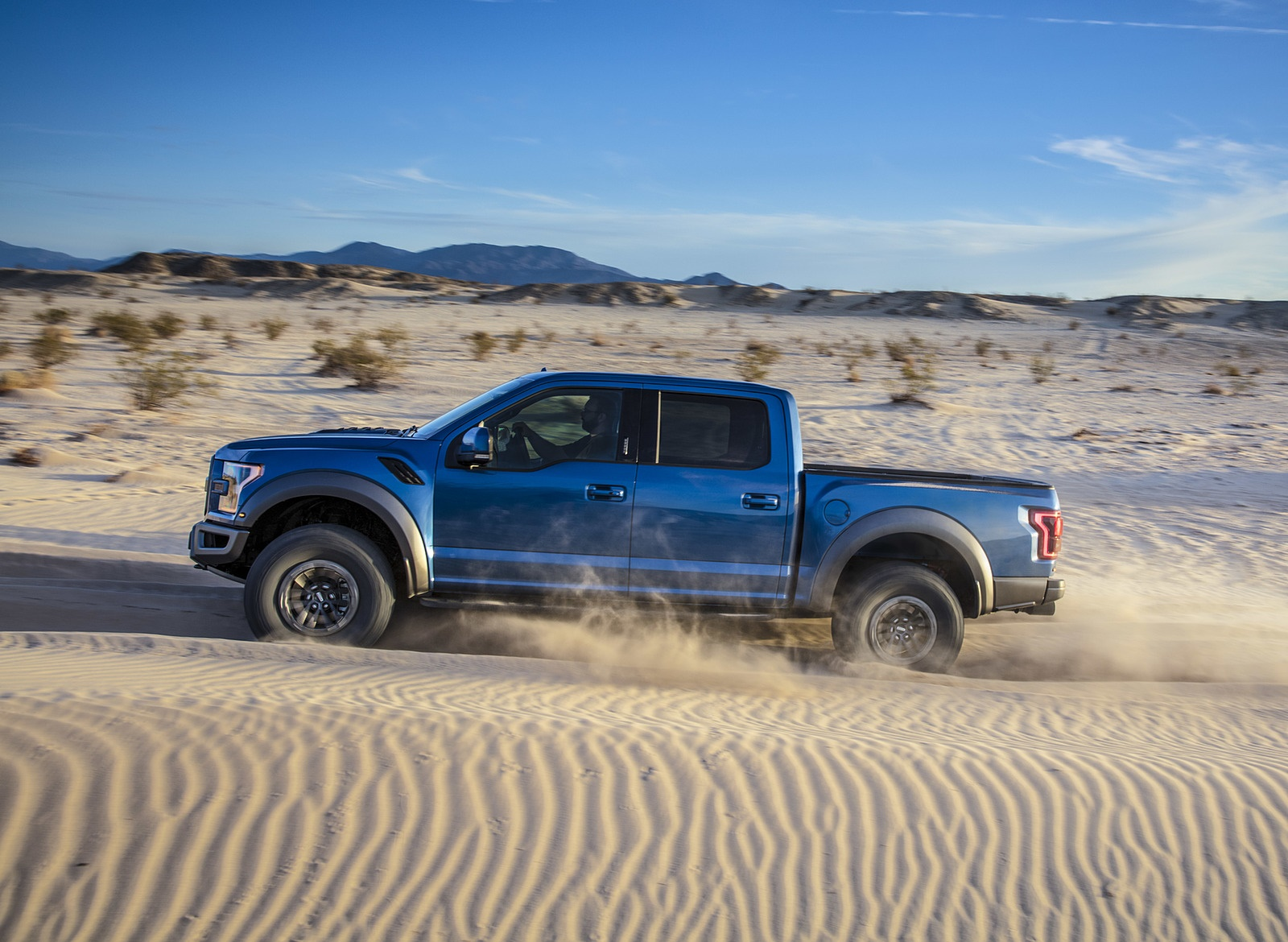 2019 Ford F-150 Raptor Side Wallpapers (10)