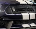 2019 Ford Mustang Shelby GT350 Grill Wallpapers 150x120 (8)