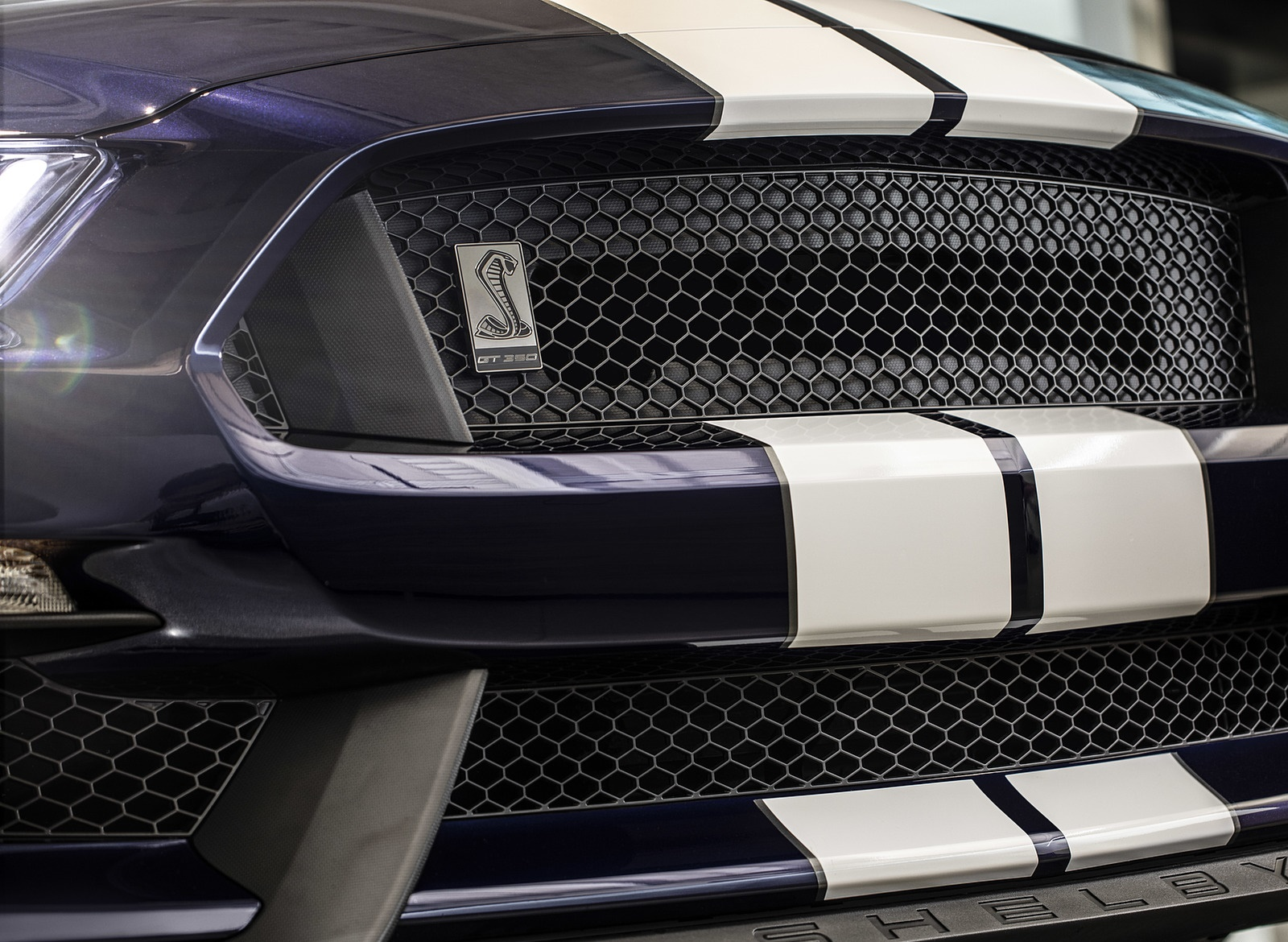 2019 Ford Mustang Shelby GT350 Grill Wallpapers (8)