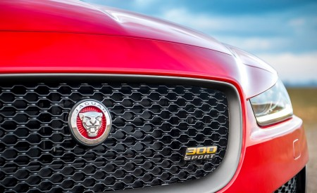 2019 Jaguar XE 300 SPORT Grill Wallpapers 450x275 (10)