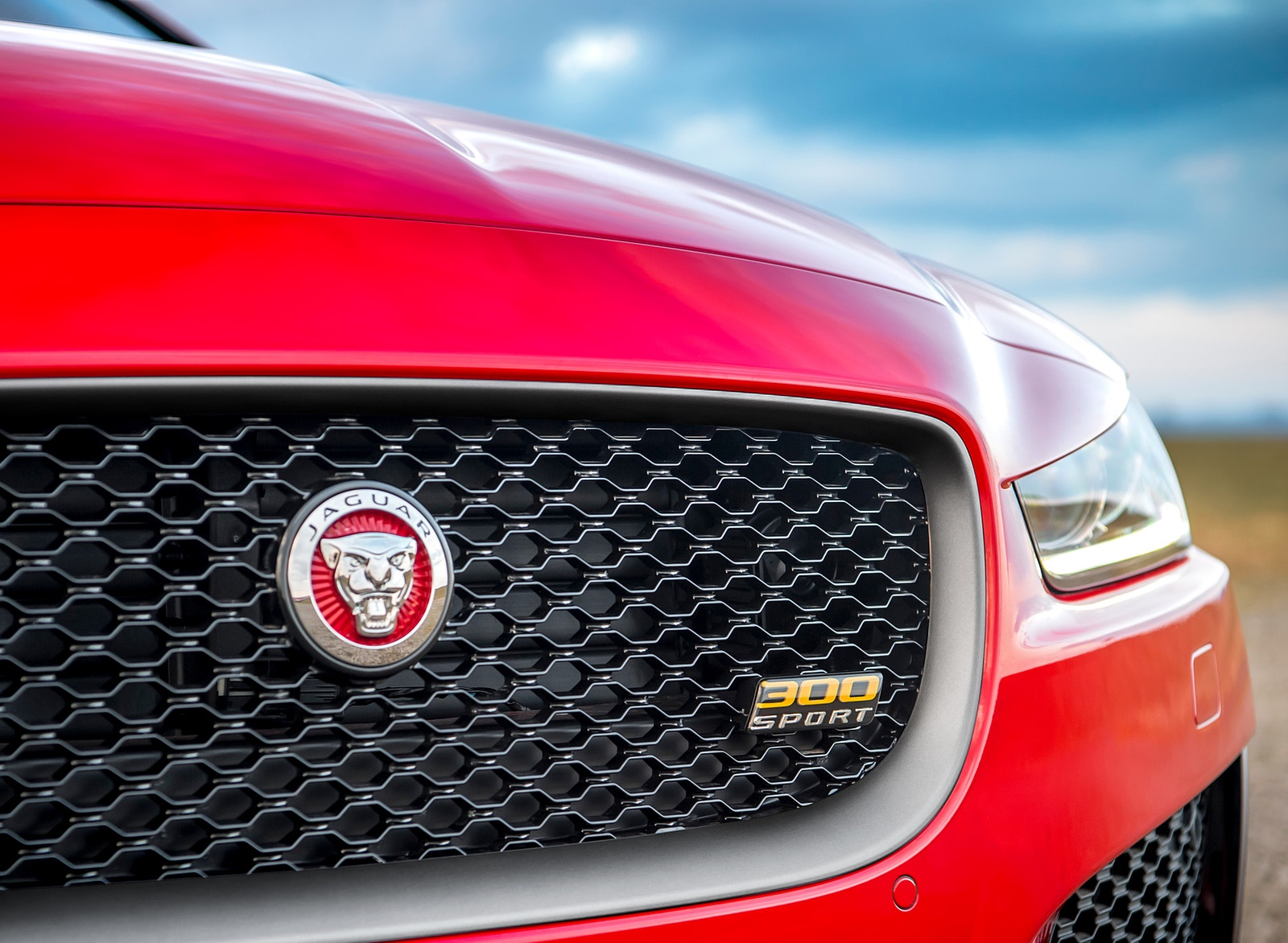 2019 Jaguar XE 300 SPORT Grill Wallpapers (10)