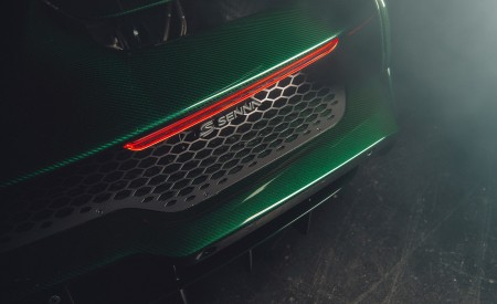 2019 McLaren Senna (Color: Emerald Green) Tail Light Wallpapers 450x275 (114)