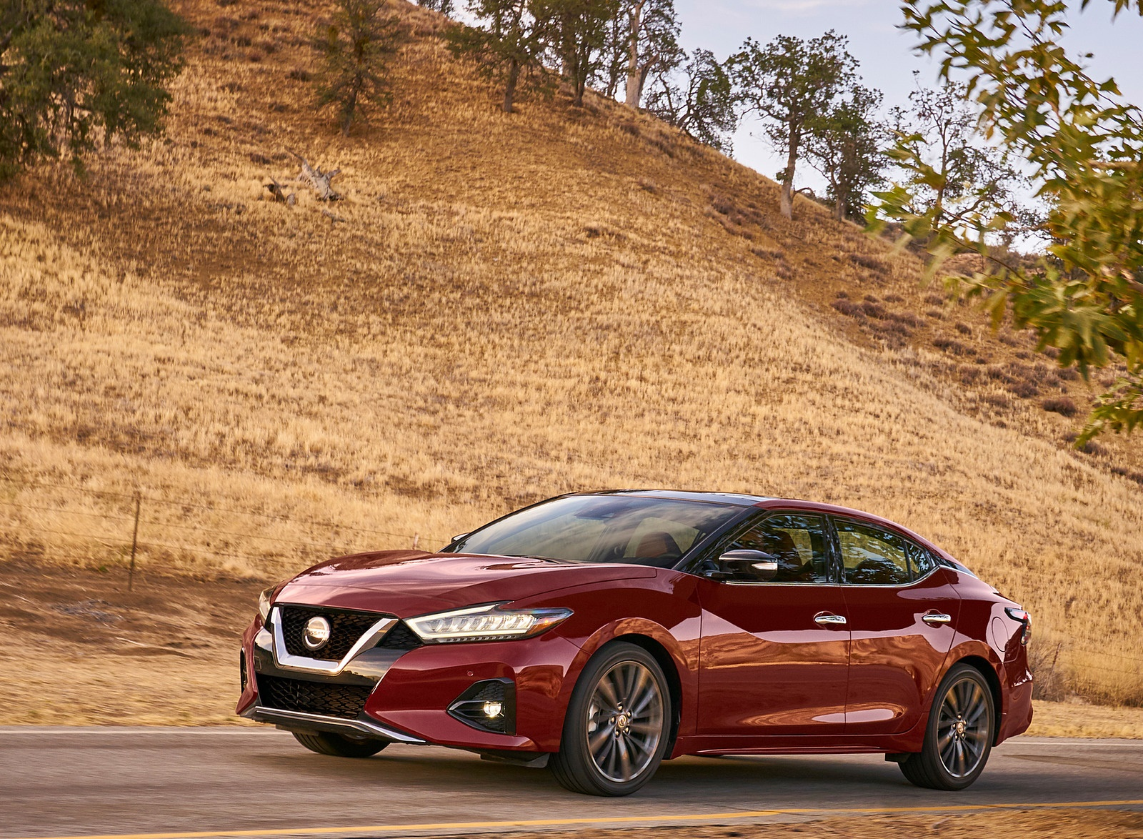 2019 Nissan Maxima Front Three-Quarter Wallpapers (6)