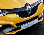 2019 Renault Megane R.S. Trophy Grill Wallpapers 150x120 (38)