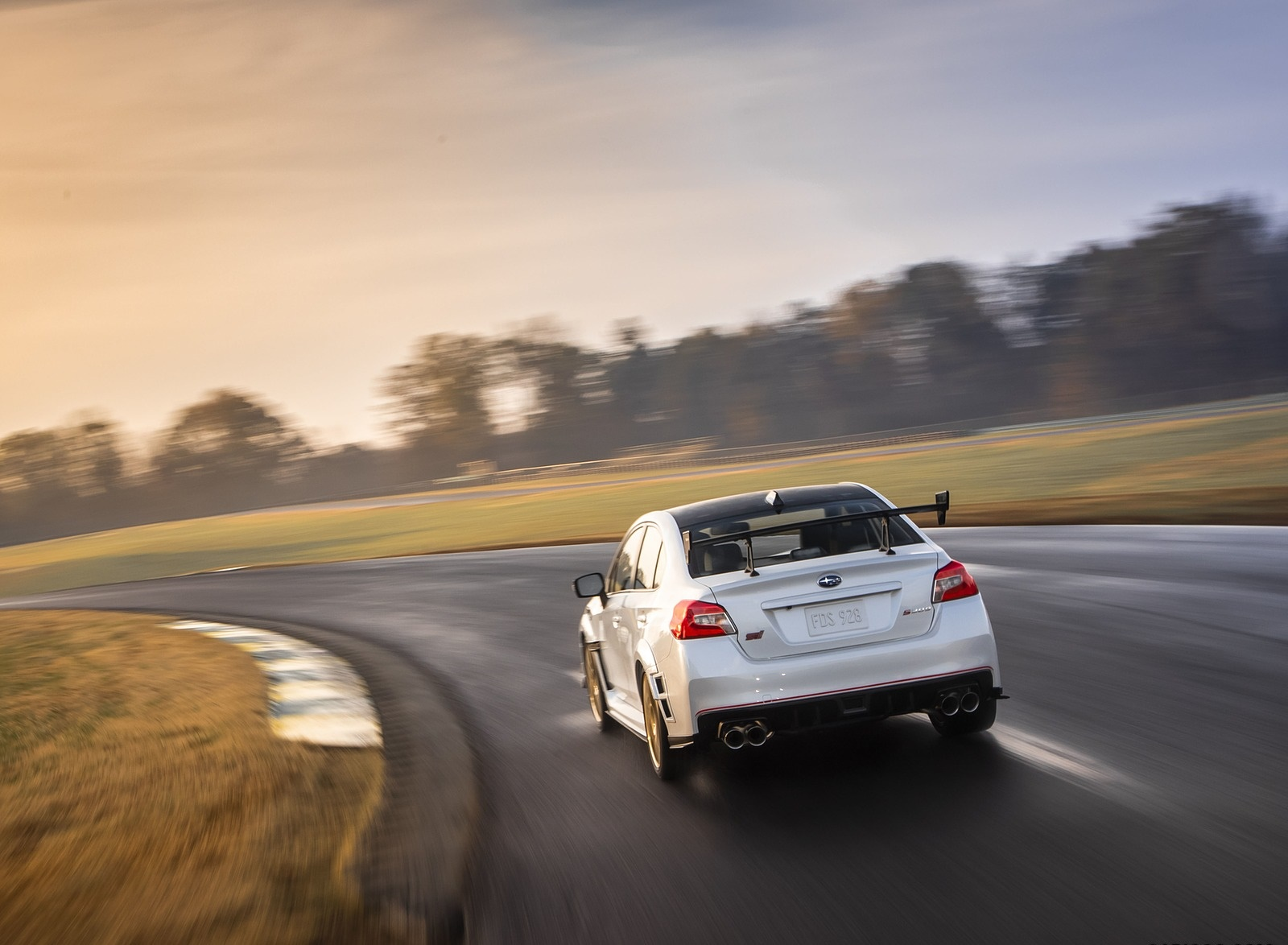 2019 Subaru WRX STI S209 Rear Wallpapers (7)