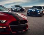 2020 Ford Mustang Shelby GT500 Grill Wallpapers 150x120 (15)