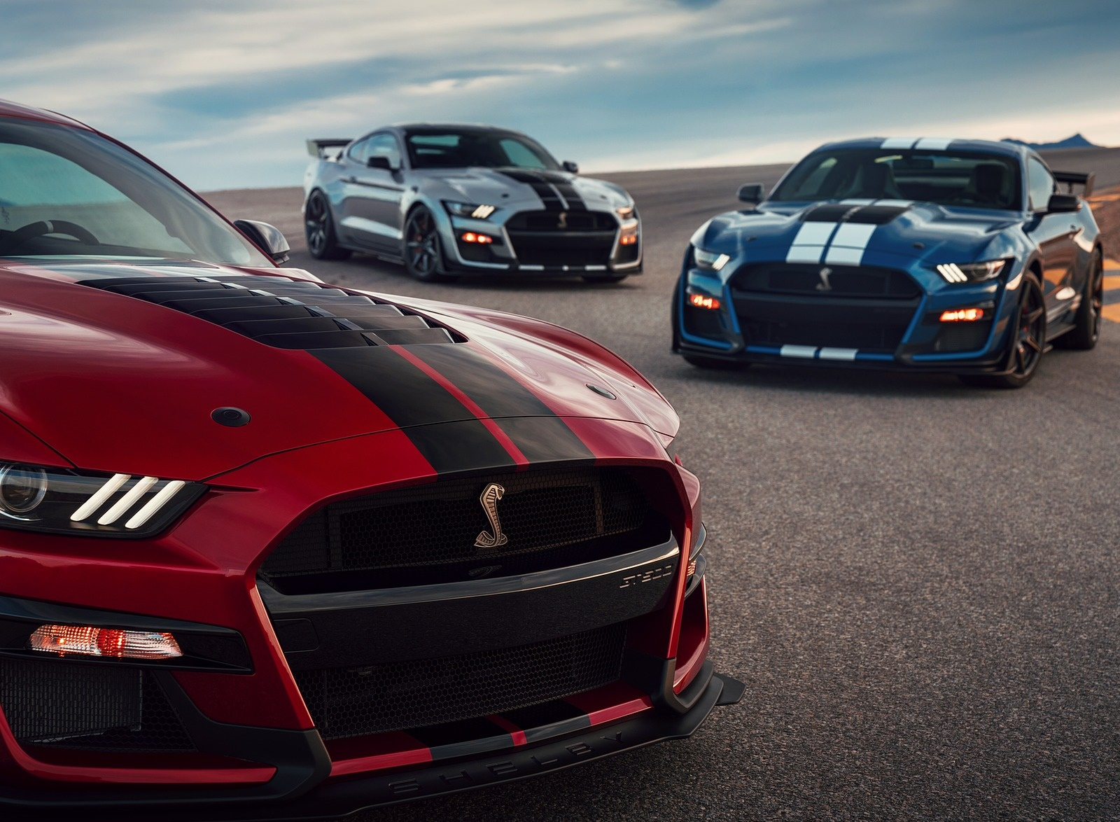 2020 Ford Mustang Shelby GT500 Grill Wallpapers (15)