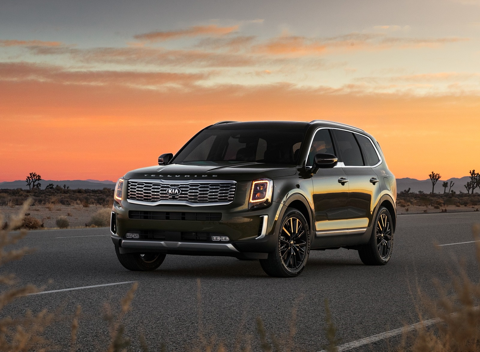 2020 Kia Telluride Front Three-Quarter Wallpapers (6)