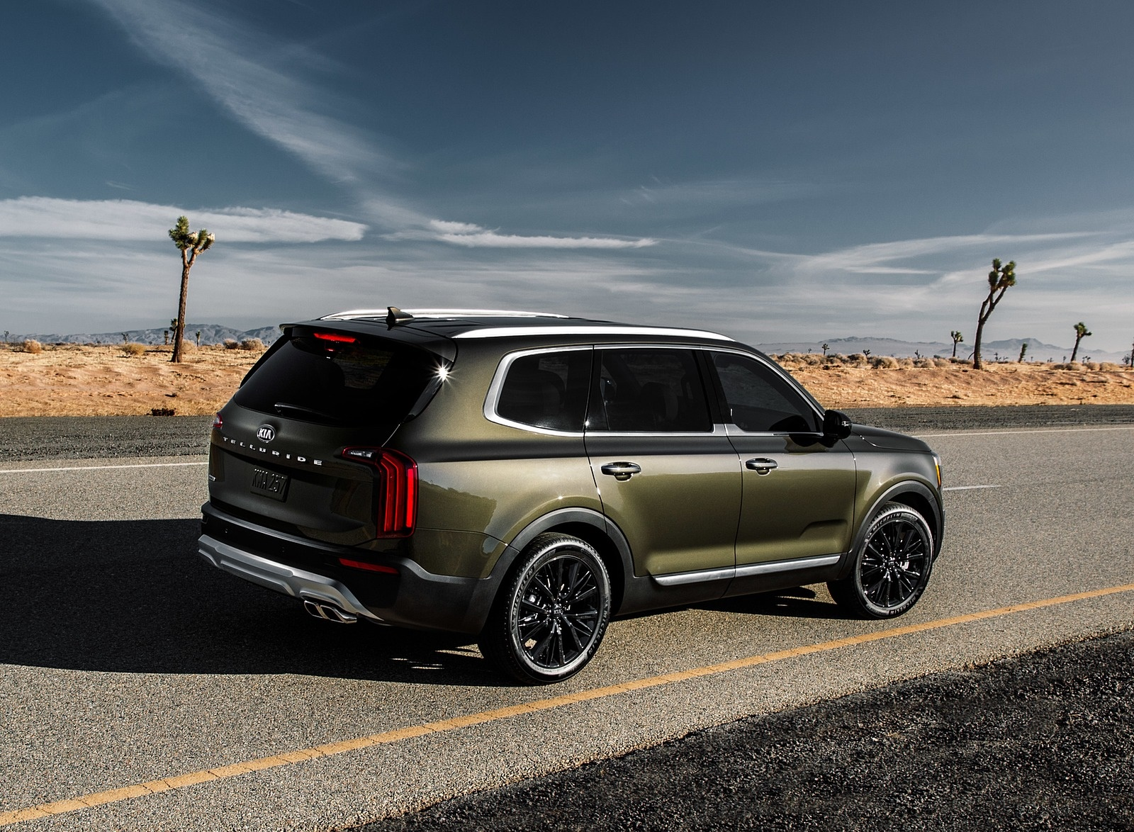 2020 Kia Telluride Rear Three-Quarter Wallpapers (15)