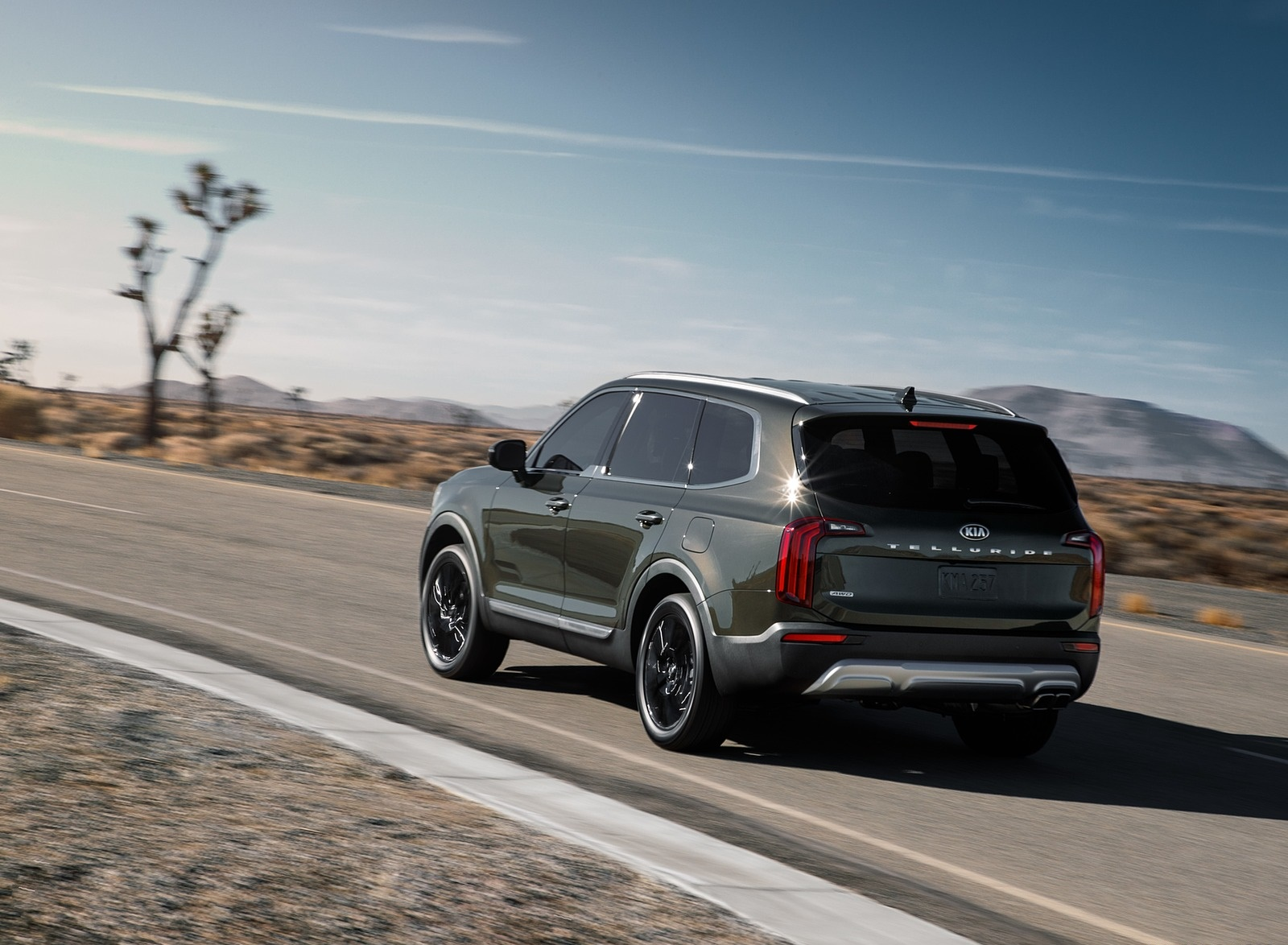 2020 Kia Telluride Rear Three-Quarter Wallpapers (11)