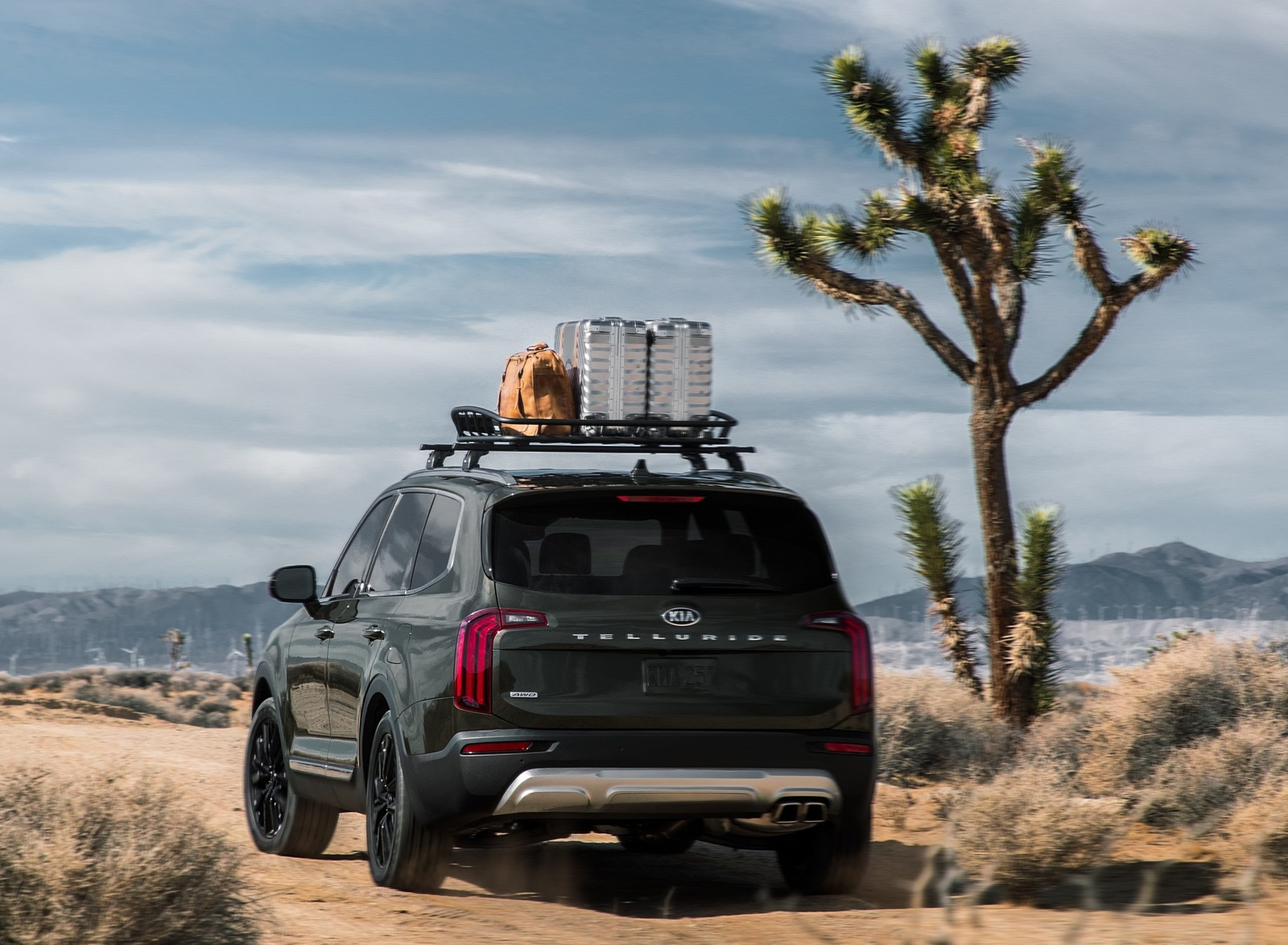 2020 Kia Telluride Rear Wallpapers (14)