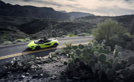 2020 McLaren 600LT Spider (Color: Lime Green) Top Wallpaper 450x275 (73)