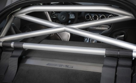 2020 Mercedes-AMG GT R Pro Roll Cage Wallpaper 450x275 (11)