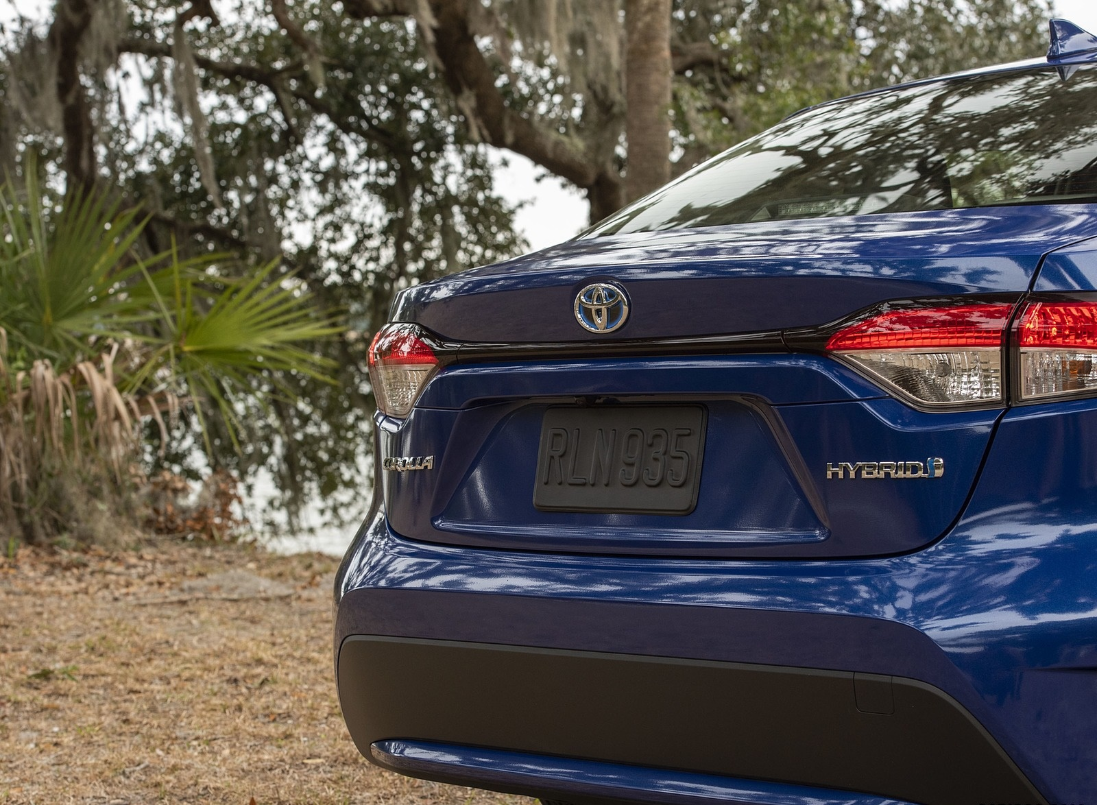 2020 Toyota Corolla Hybrid LE (Color: Blue Crush Metallic) Detail Wallpapers (10)