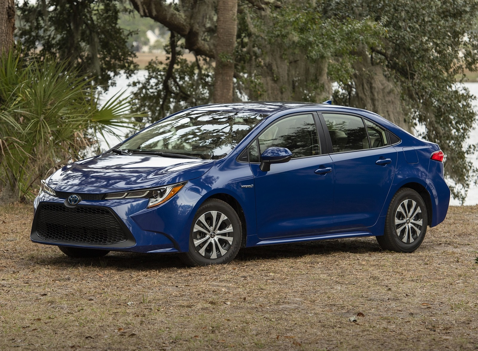 2020 Toyota Corolla Hybrid LE (Color: Blue Crush Metallic) Front Three-Quarter Wallpapers (5)
