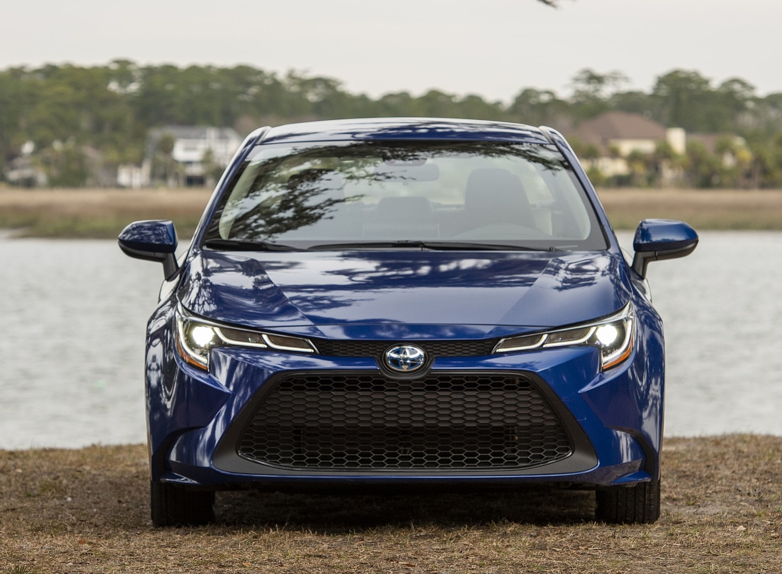 2020 Toyota Corolla Hybrid LE (Color: Blue Crush Metallic) Front Wallpapers (6)
