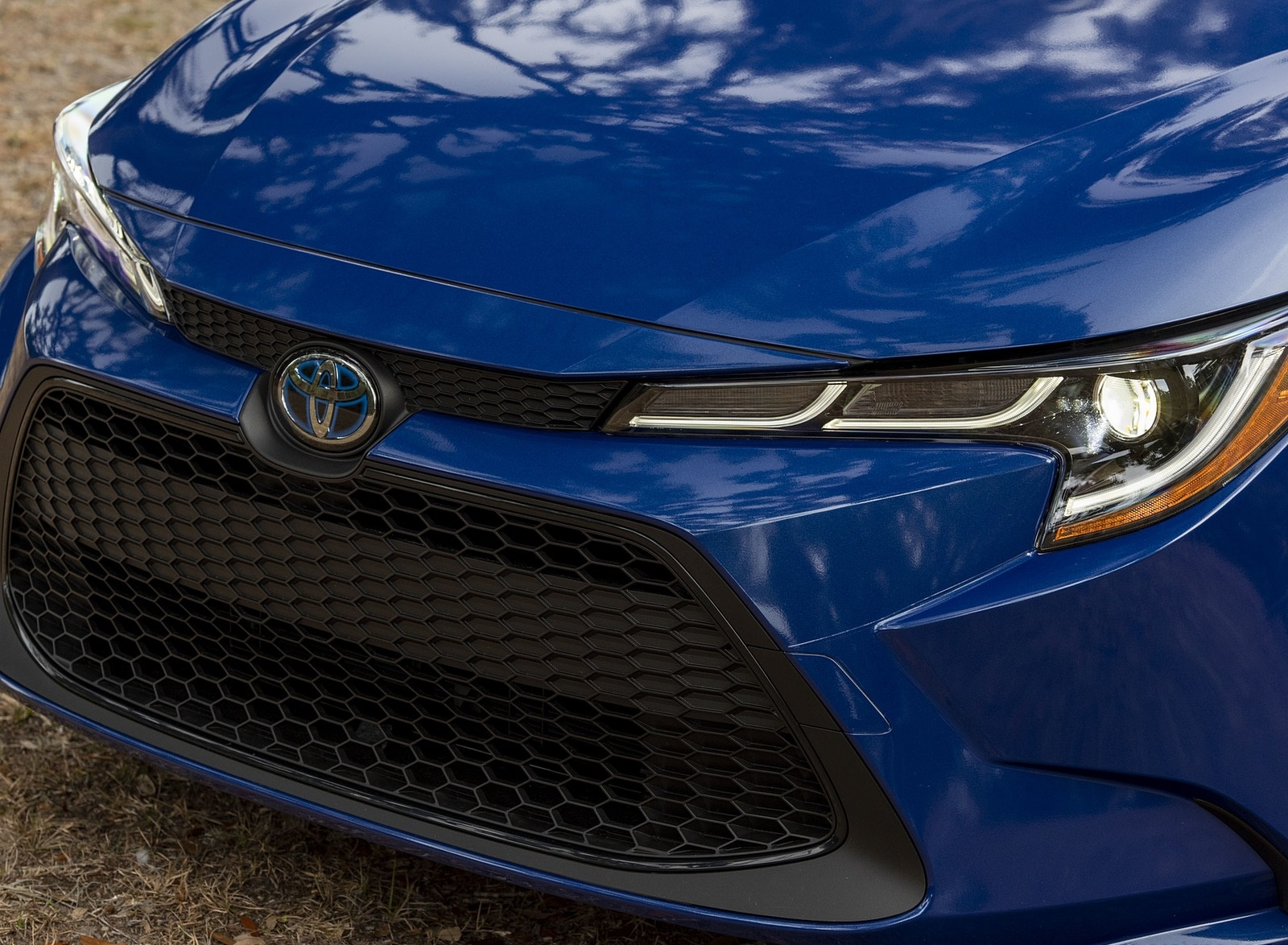 2020 Toyota Corolla Hybrid LE (Color: Blue Crush Metallic) Grill Wallpapers (9)