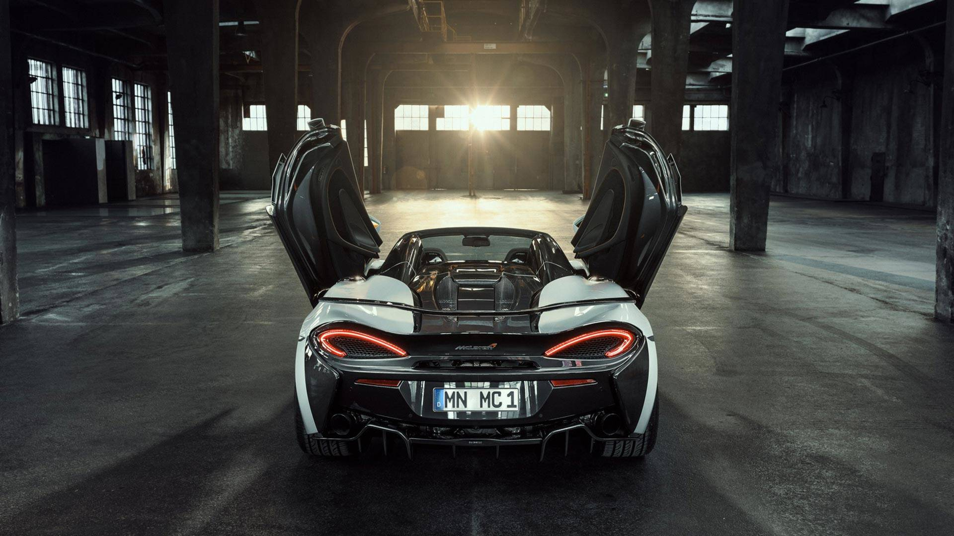 2018 NOVITEC McLaren 570S Spider Rear Wallpapers (10)
