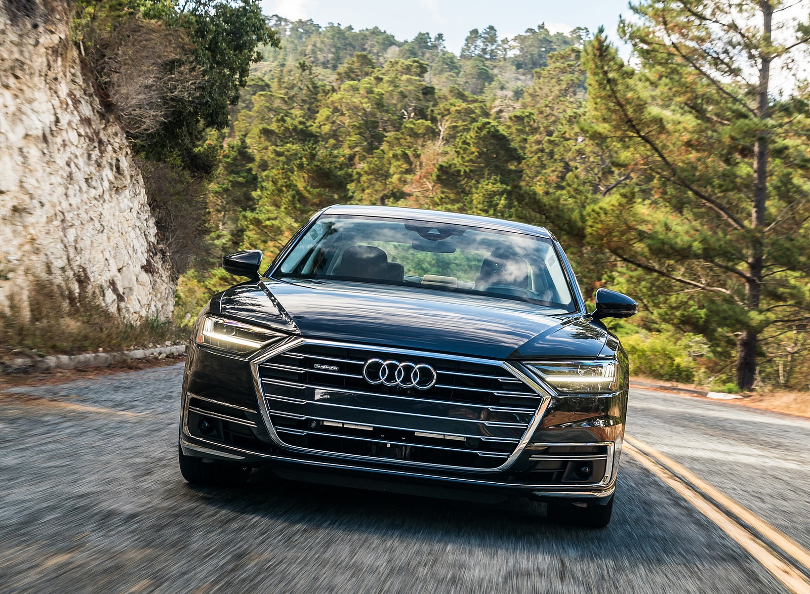 2019 Audi A8 (US-Spec) Front Wallpapers (5)