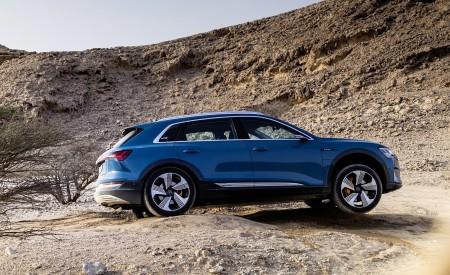 2019 Audi e-tron (Color: Antigua Blue) Side Wallpaper 450x275 (84)