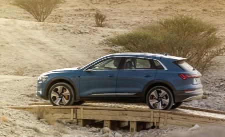 2019 Audi e-tron (Color: Antigua Blue) Side Wallpaper 450x275 (86)