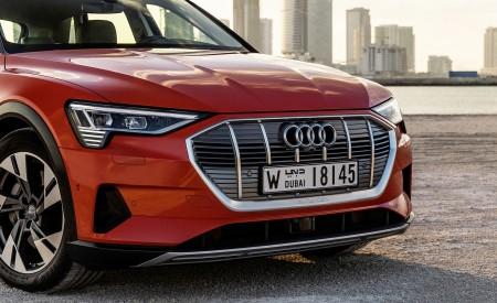2019 Audi e-tron (Color: Catalunya Red) Grill Wallpaper 450x275 (48)