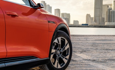 2019 Audi e-tron (Color: Catalunya Red) Wheel Wallpaper 450x275 (46)