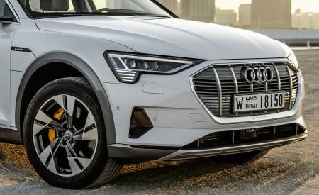 2019 Audi e-tron (Color: Glacier White) Detail Wallpaper 450x275 (234)