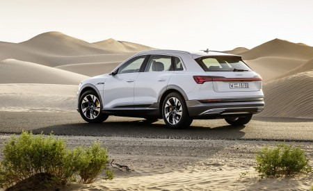2019 Audi e-tron (Color: Glacier White) Rear Three-Quarter Wallpaper 450x275 (224)