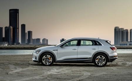 2019 Audi e-tron (Color: Glacier White) Side Wallpaper 450x275 (230)