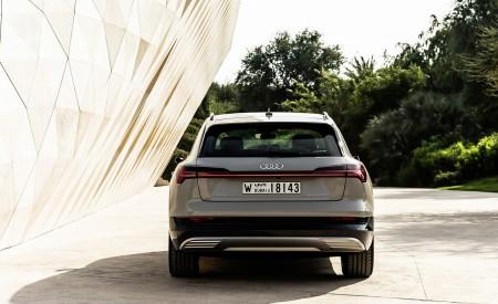 2019 Audi e-tron (Color: Siam Beige) Rear Wallpaper 450x275 (184)