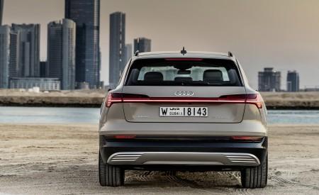 2019 Audi e-tron (Color: Siam Beige) Rear Wallpaper 450x275 (173)