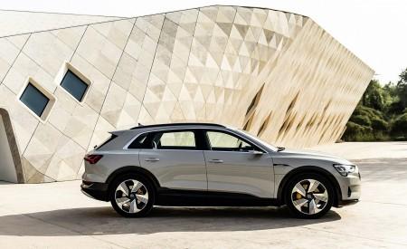 2019 Audi e-tron (Color: Siam Beige) Side Wallpaper 450x275 (185)