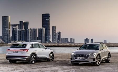 2019 Audi e-tron (Color: Siam Beige) and Audi e-tron (Color: Glacier White) Wallpaper 450x275 (195)