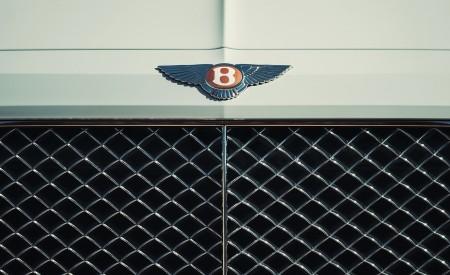 2019 Bentley Bentayga Plug-in Hybrid Grill Wallpapers 450x275 (43)