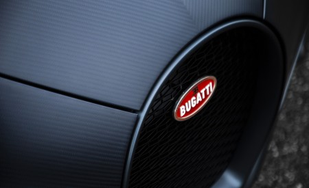 2019 Bugatti Chiron Sport 110 ans Bugatti Grill Wallpapers 450x275 (6)