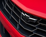 2019 Chevrolet Camaro Turbo 1LE Grill Wallpapers 150x120 (18)