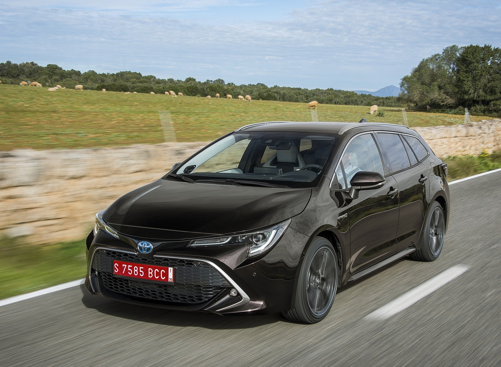 2019 Toyota Corolla Touring Sports 2.0L Brown (EU-Spec) Front Three-Quarter Wallpapers (13)